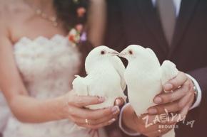 Bajkowe wesele w Zadymie